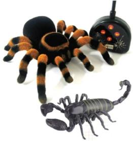 Halloween fergesteuerte Spinne und Skorpion